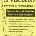 Affiche réunion Piboulon