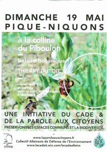 affiche Piboulon 3