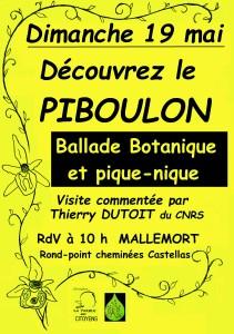 affiche piboulon-4